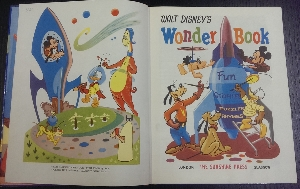 Image for Walt Disney's Wonder Book : fun, stories, puzzles, rhymes.